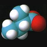 丁酸异戊酯