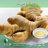 Water Soluble Gingerol