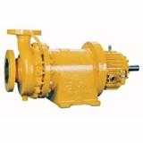 Caster Pumps