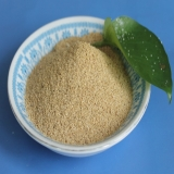 Compound betaine